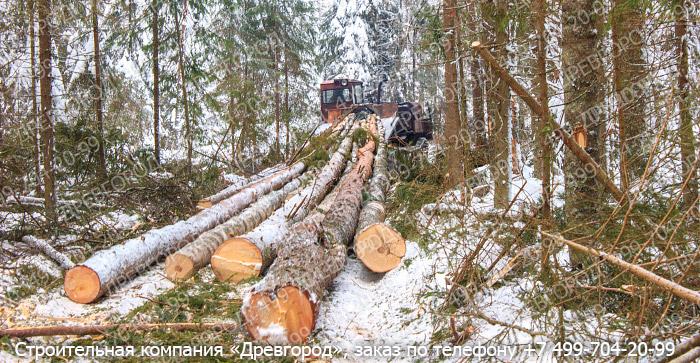 телефоны, часы работа по вырубке леса вакансии Онлайн